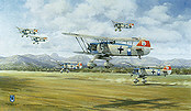 Heinkel He-51 B1, JG 135 Bad Aibling aviation art print by Friedl Wuelfing