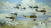 Richthofens Flying Circus 1918, Fokker DR I Jasta 6 and 11 aviation art by Friedl Wuelfing