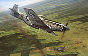 Dual Victory, P-51D Mustang aviation art by Richard Taylor