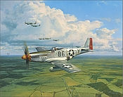 Warbird Kalender 2021 P51 Mustang Reach for the Sky - Februar
