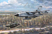 Tornado IDS JaboG 31 Boelcke aviation art print by Ronald Wong
