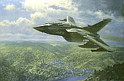 Jagdbombergeschwader 33 Luftwaffe Tornado aviation art by Ronald Wong
